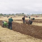 Ploughing National 2009 053